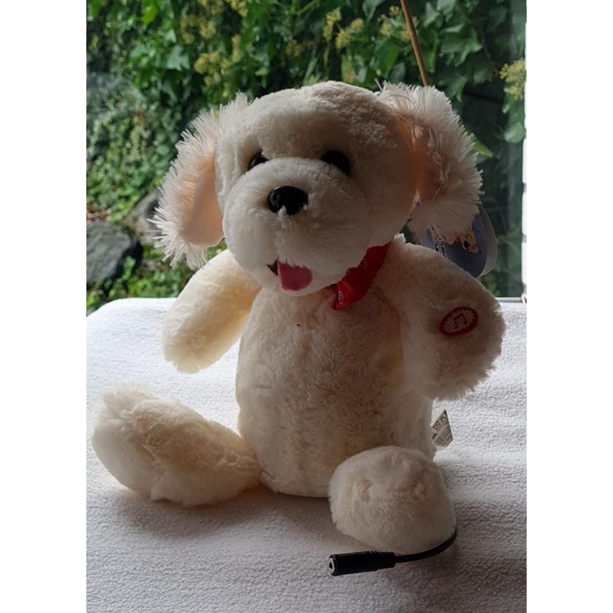 adaptiertes Spielzeug zur Tasternutzung. Tanzender Hund