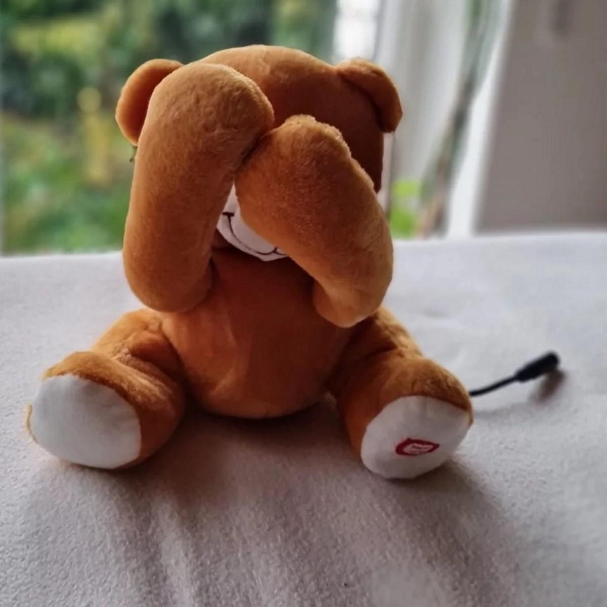 adaptierter Bär mit Kabel und Klinkenstecker